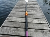 Racing Carbon Composit Oars, Sculls (pair), 2.83m-2.93m, 1.55kg/Scull, for EDON, Virusbots